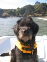 Tiller wearing his lifejacket.
