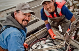 Commercial fishing in Bristol Bay.
