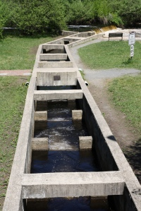 "A fairly long fish ladder used by river herring to ""step up"" around the dam. Photo by Herring Alliance."
