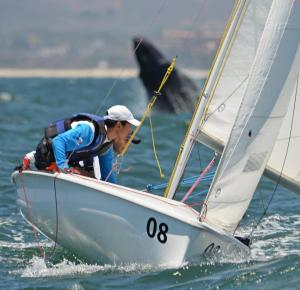 The whales are excited for Clean Regattas in Mexico too! Photo from: WesMex Regatta